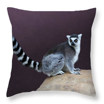 Thereby Hangs A Tail Throw Pillow