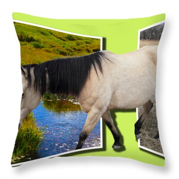 The Grass Is Always Greener On The Other Side Throw Pillow