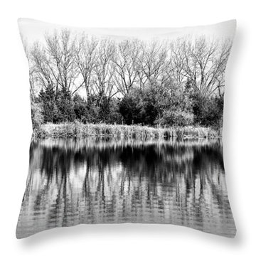 Throw Pillow featuring the photograph Rippled Reflection by Bill Kesler