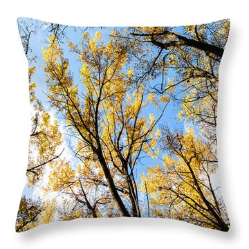 Throw Pillow featuring the photograph Looking Up by Bill Kesler