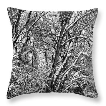 Three Tires And A Snowstorm Throw Pillow