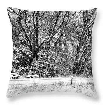 Throw Pillow featuring the photograph Three Tires And A Snowstorm by Bill Kesler
