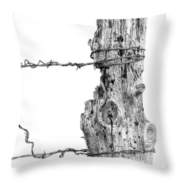 Throw Pillow featuring the photograph Post With Character by Bill Kesler