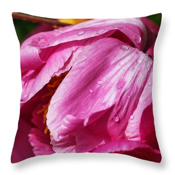 Throw Pillow featuring the photograph Pink Delight by Bill Kesler