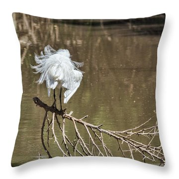 Throw Pillow featuring the photograph Fluff Time by Bill Kesler