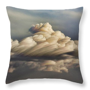 Throw Pillow featuring the photograph Cupcake In The Cloud by Bill Kesler