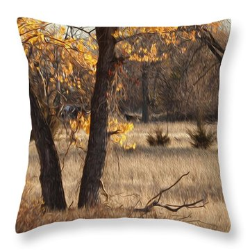 Shades Of Autumn Throw Pillow by Bill Kesler