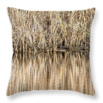 Golden Reed Reflection Throw Pillow