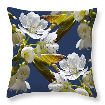 Cherry Blossoms Throw Pillow by Christina Rollo