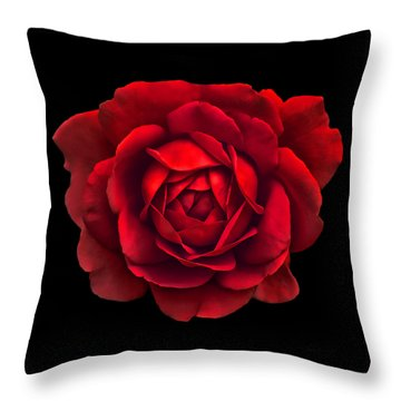 Black White Red Roses Abstract Throw Pillow