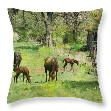 Spring Colts Throw Pillow