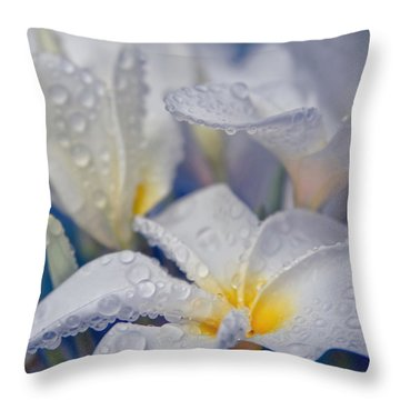 Throw Pillow featuring the photograph The Wind Of Love by Sharon Mau