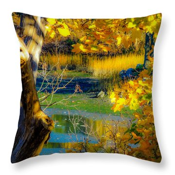As Fall Leaves Throw Pillow by Glenn Feron