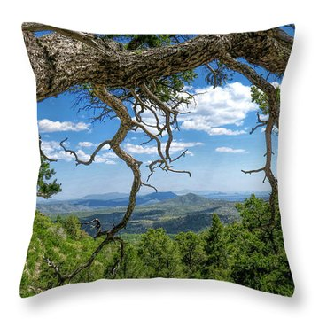 Throw Pillow featuring the photograph 'as Far As The Eye Can See' by Charles Ables