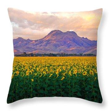 As Far As The Eye Can See  Throw Pillow