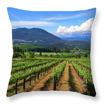 Throw Pillow featuring the photograph As Far As The Eye Can See by Skip Hunt