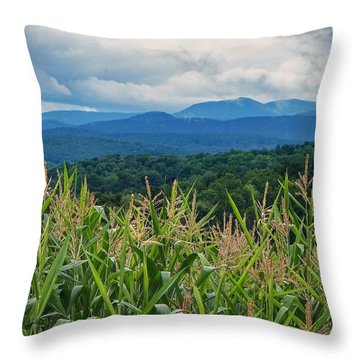 Throw Pillow featuring the photograph As High As An Elephants Eye by Kendall McKernon