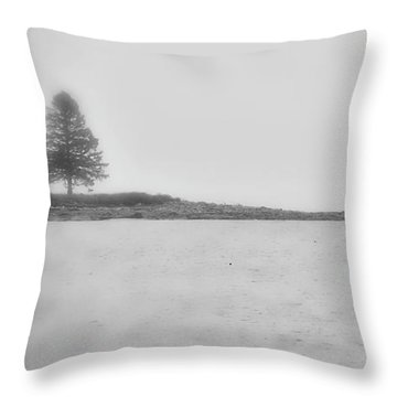 Throw Pillow featuring the photograph As I Look Out To Sea by Richard Bean