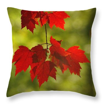 As Red As They Can Be Throw Pillow by Aimelle