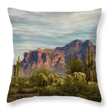 Throw Pillow featuring the photograph As The Evening Arrives In The Sonoran  by Saija Lehtonen