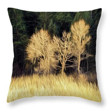 As The Sunset's Throw Pillow by James Steele