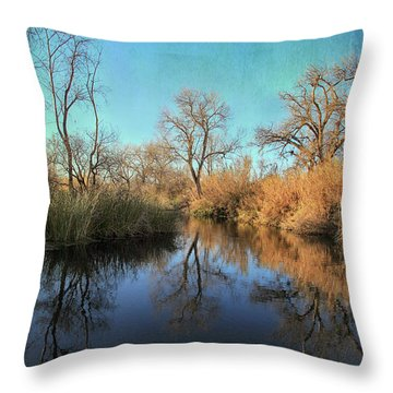 Throw Pillow featuring the photograph As We Taked About The Year by Laurie Search
