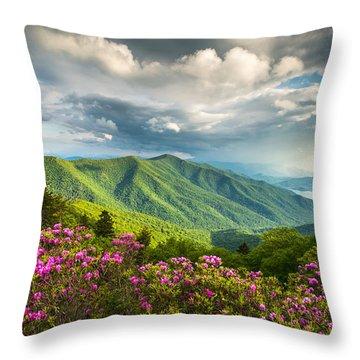 Blue Ridge Parkway Throw Pillows