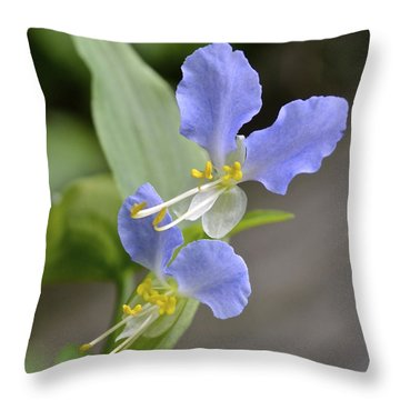Virginia Dayflower Pair Throw Pillow