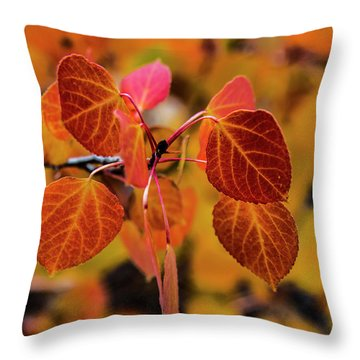 Aspen Aflame Throw Pillow