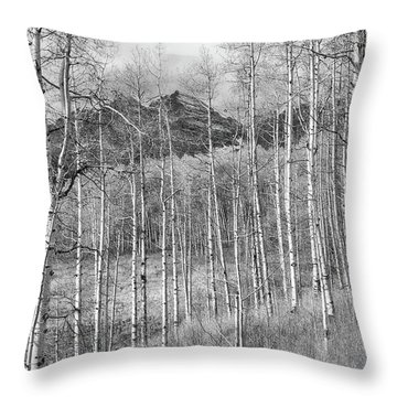 Throw Pillow featuring the photograph Aspen Ambience Monochrome by Eric Glaser