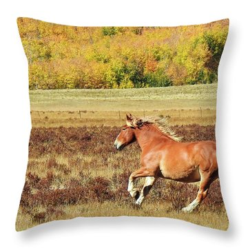 Aspen And Horsepower Throw Pillow