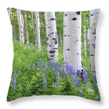 Aspen And Lupine Throw Pillow