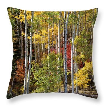 Aspen And Red Maple Throw Pillow