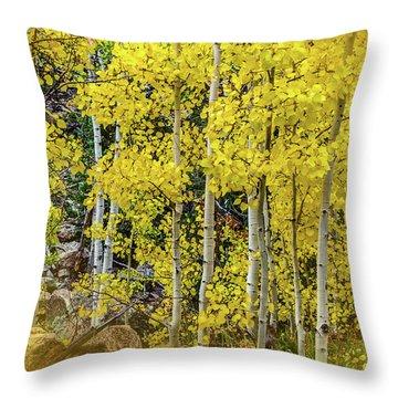 Throw Pillow featuring the photograph Aspen Autumn Burst by Bill Gallagher