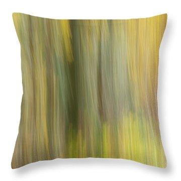 Aspen Blur #2 Throw Pillow