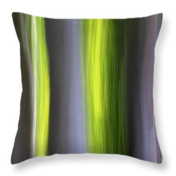 Aspen Blur #7 Throw Pillow