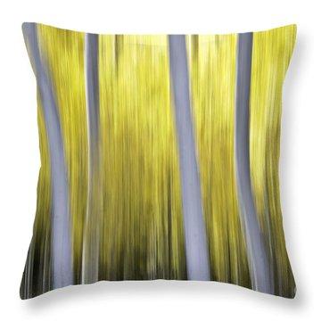 Throw Pillow featuring the photograph Aspen Blurr by Bryan Keil