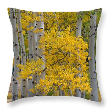 Aspen Bouquet Throw Pillow