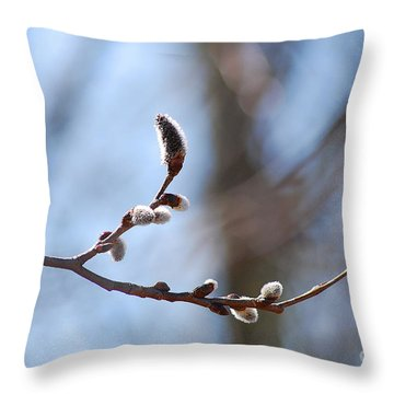Aspen Catkins 20120314_33a Throw Pillow by Tina Hopkins