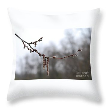 Aspen Catkins 20120316_15a Throw Pillow by Tina Hopkins
