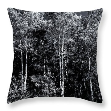 Aspen Drama Throw Pillow by Shelly Gunderson