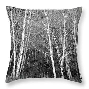 Aspen Forest Black And White Print Throw Pillow
