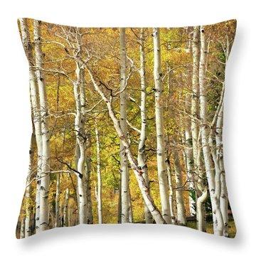 Aspen Forest Throw Pillow