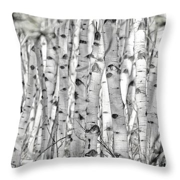 Aspen Forest Iv Throw Pillow