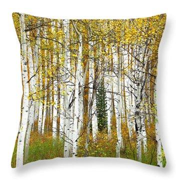 Aspen Forest Panoramic Throw Pillow