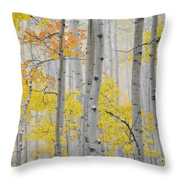Aspen Forest Texture Throw Pillow