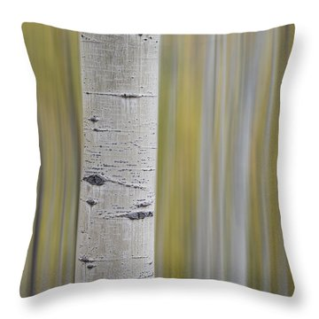 Aspen Throw Pillow by Gary Lengyel