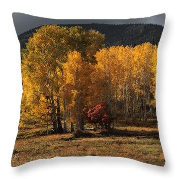 Aspen Glow Panorama Throw Pillow
