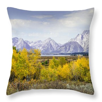 Aspen Gold In The Tetons Throw Pillow