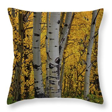 Aspen Golden Throw Pillow